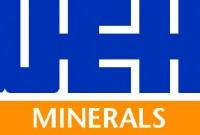 Logo: Weir Minerals