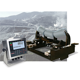 Photo: Rice Lake Weighing Systems